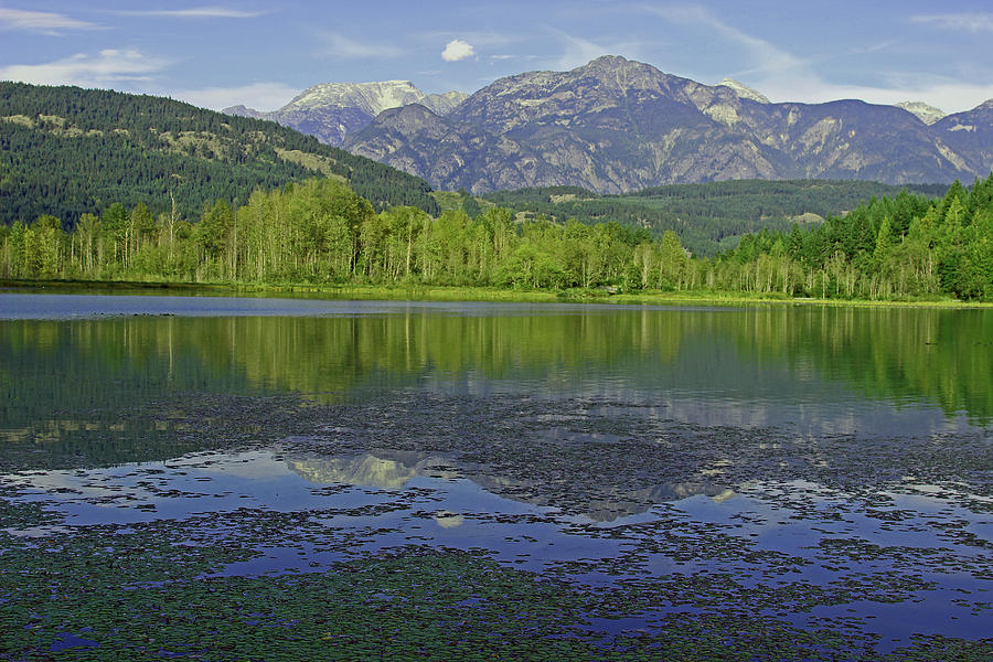 British Columbia Photograph - One Mile Lake Reflections 1a by Walter Fahmy
