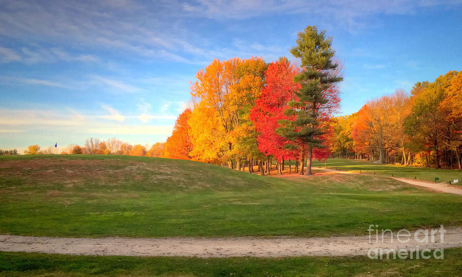 Fall Colors Photograph - One more  by Diana Nault