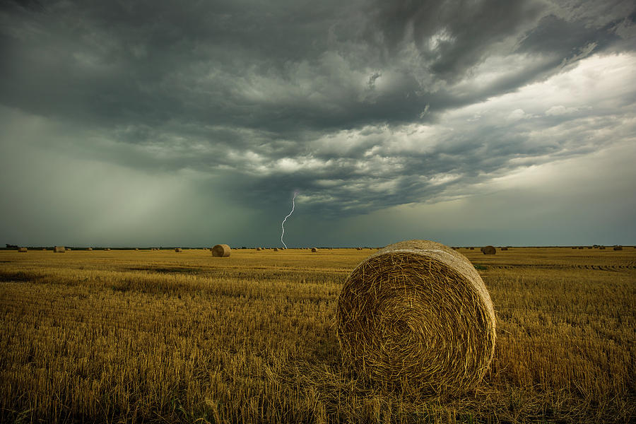 Field Photograph - One more time a round by Aaron J Groen