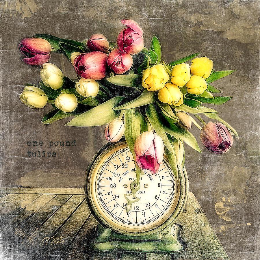 Tulips Photograph - One Pound Tulips by Joy Gerow