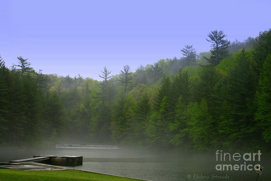 Spring Photograph - One Spring Morning by Debra Straub