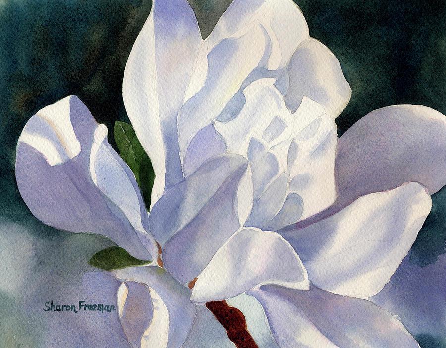Star Magnolia Painting - One Star Magnolia Blossom by Sharon Freeman