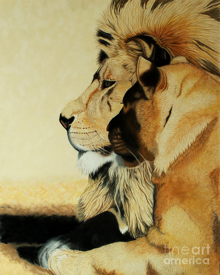 Lion Drawing - One by Vivian Bound