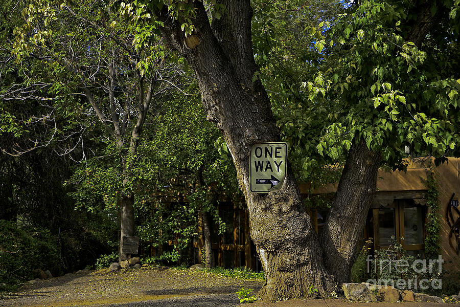 Sign Photograph - One Way by Madeline Ellis