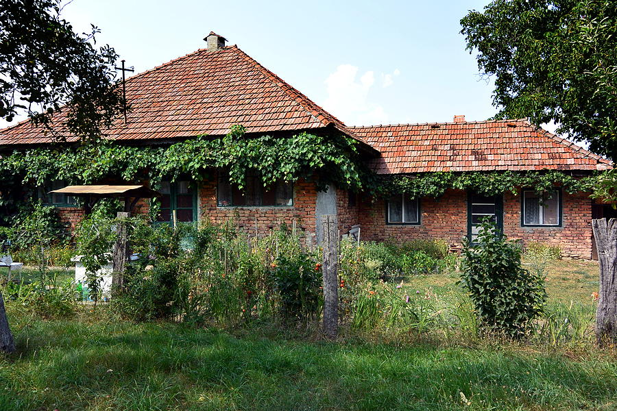 House Photograph - One With Nature by Two Small Potatoes