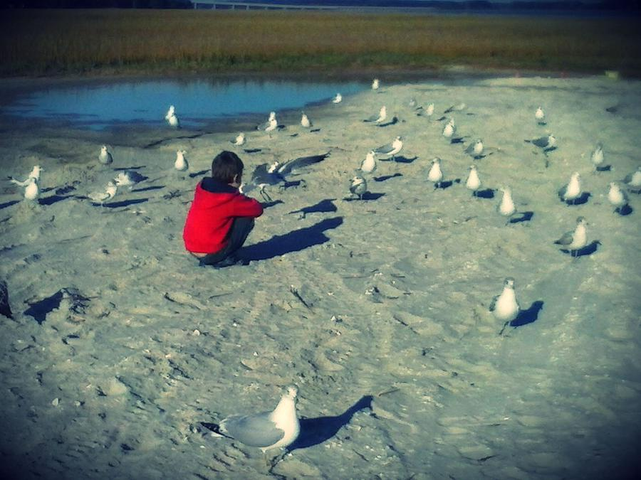 One With The Gulls Photograph by Krystal Bergeron