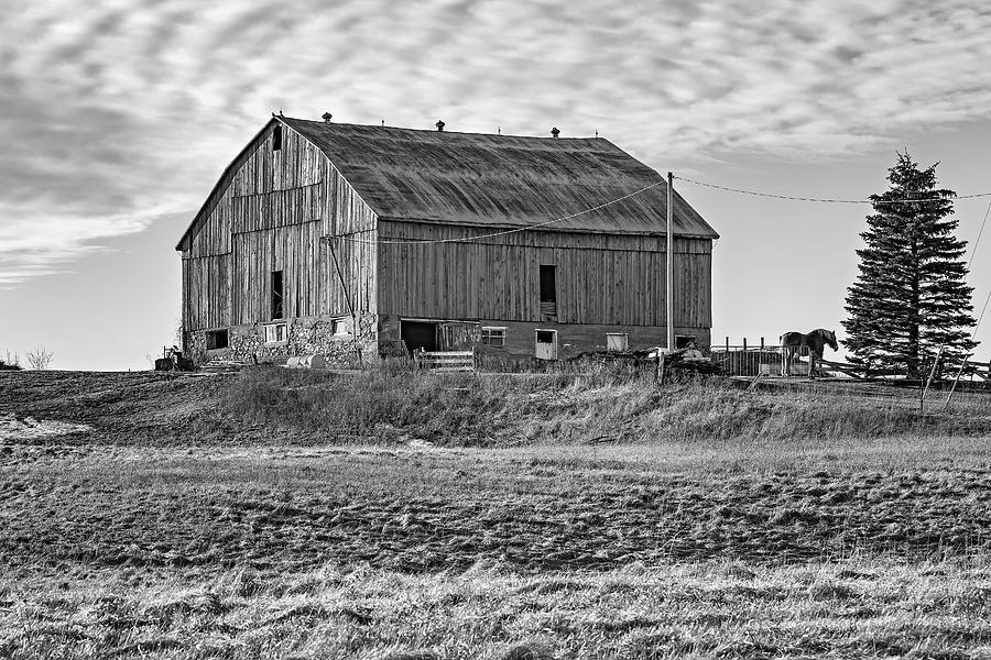 Steve Harrington Photograph - Ontario Farm 4 Bw by Steve Harrington