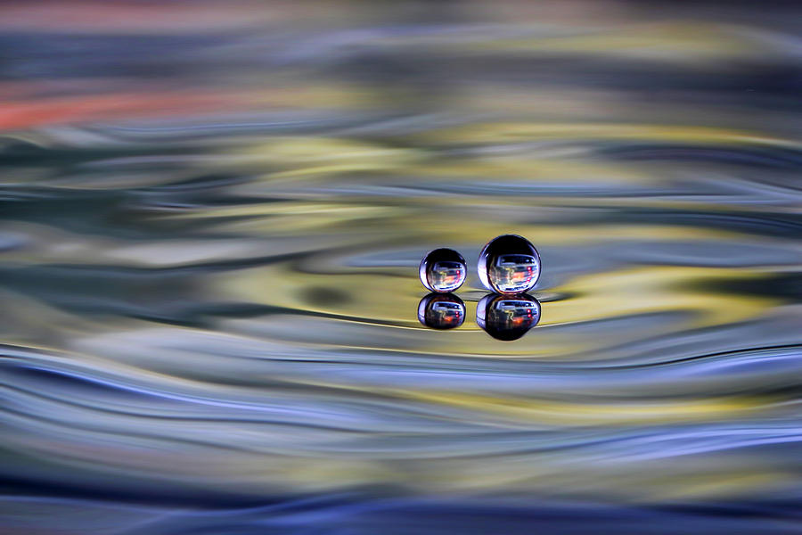 Still Life Photograph - Oo by Sugeng Sutanto