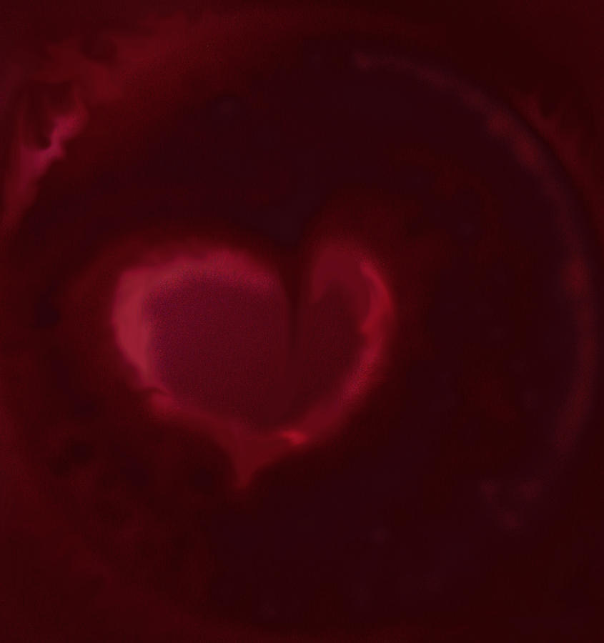 Heart Digital Art - Open Heart by Eileen Shahbazian