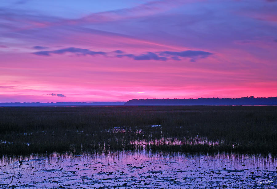 Landscape Photograph - Open Marsh by Phill Doherty