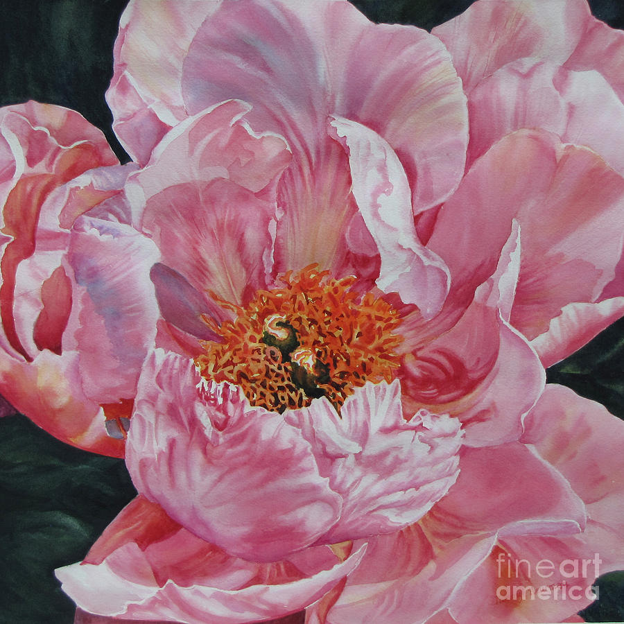 Peony Painting - Opening-act by Nancy Newman