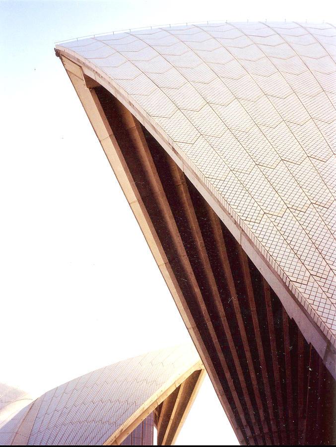 Sydney Photograph - Opera House Sale by Darren Stein