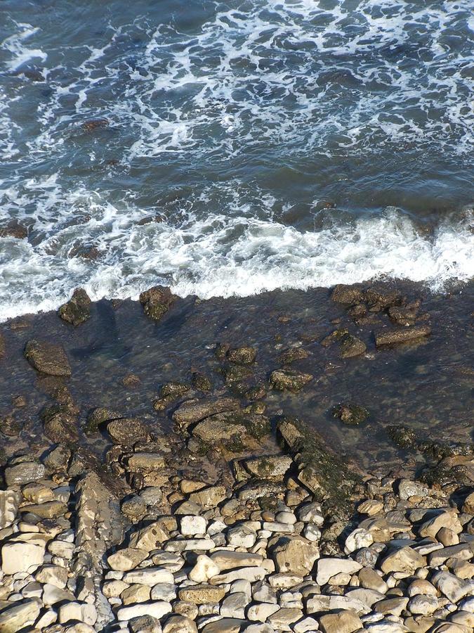 Ocean Photograph - Opponents by Shari Chavira