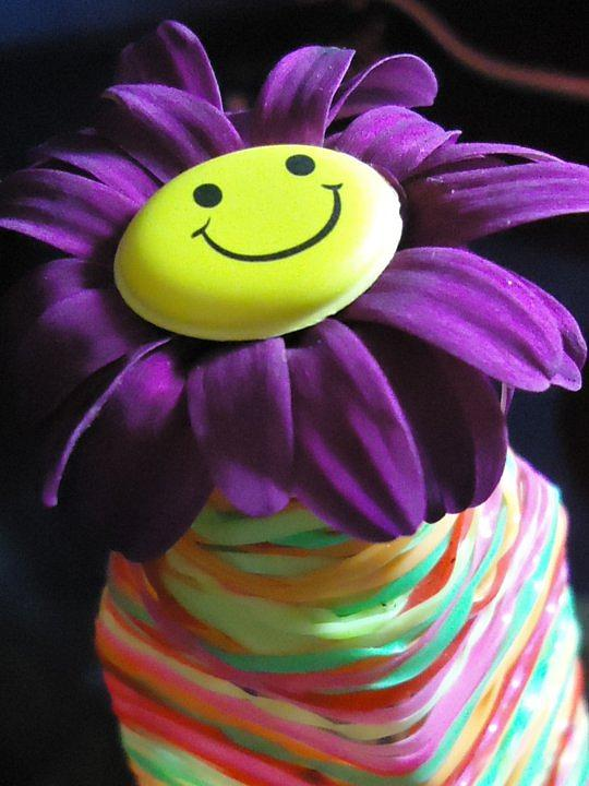 Flower Photograph - Optimism Flower by Dalia Tawfik