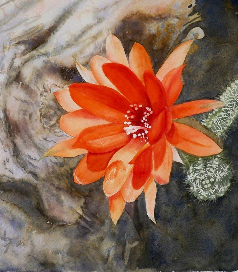 Flower Painting - Orange Cactus Flower II by Deane Locke