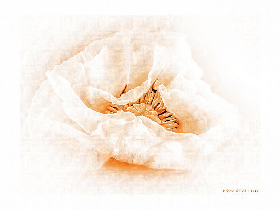 The Beauty Of Orange Poppy Digital Art