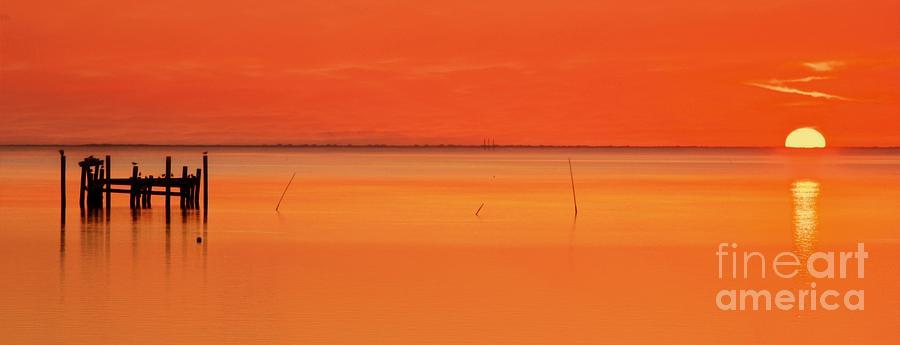Orange Crush Sunrise by Benanne Stiens