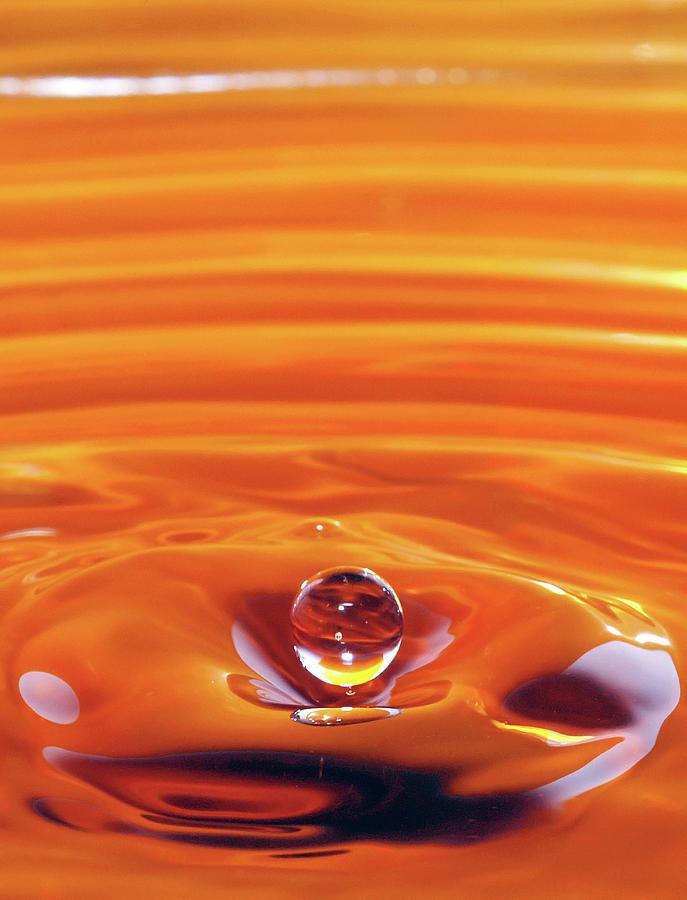 Orange Delight by Jonny Jelinek