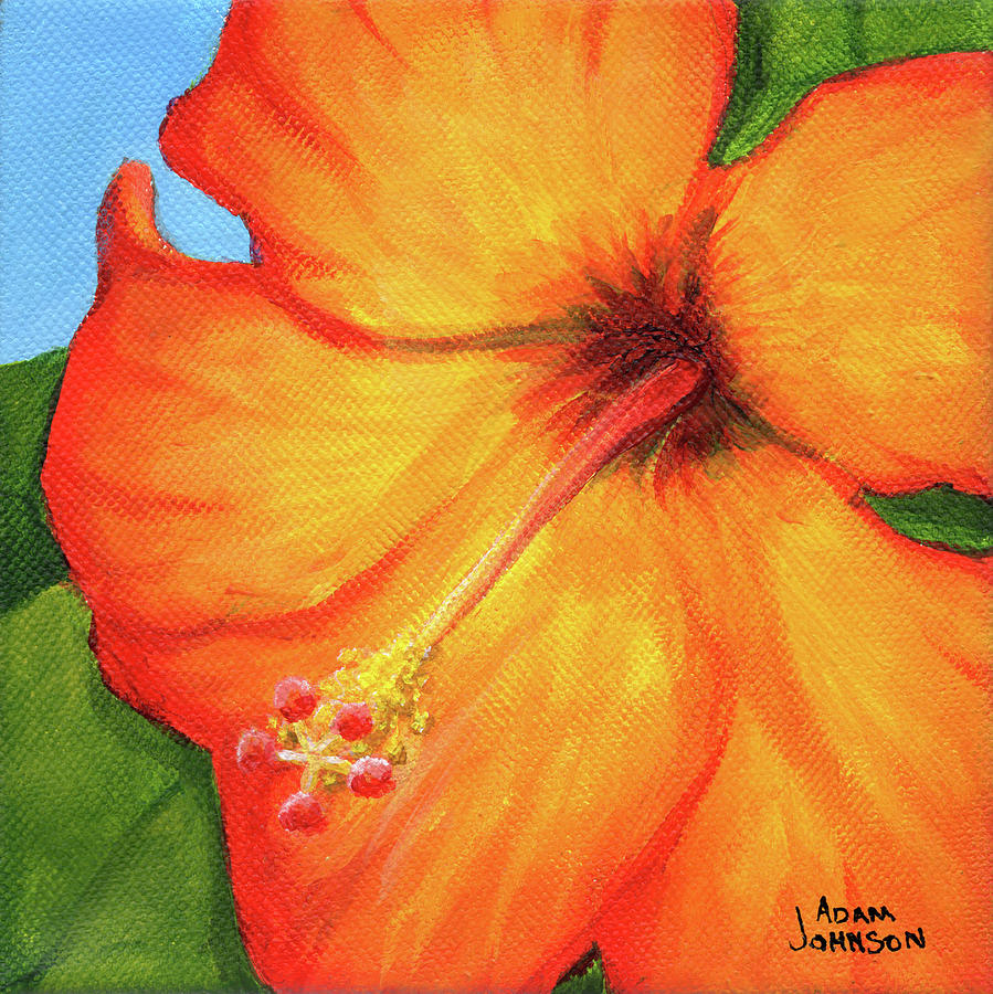 Orange Hibiscus Flower by Adam Johnson