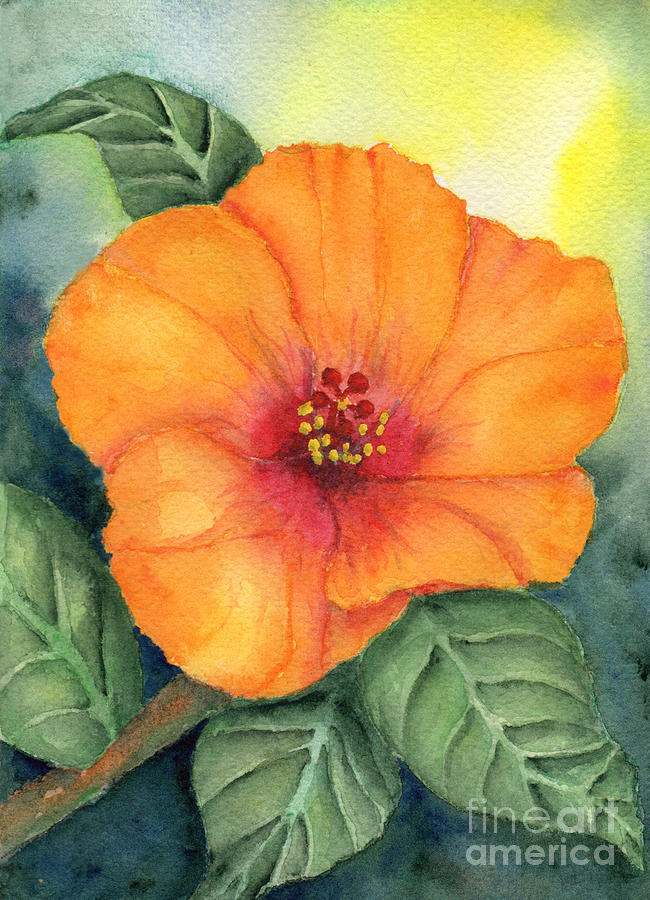 Orange Hibisus by Elizabeth Oertel