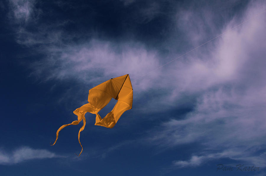 Kite Photograph - Orange Kite by Pam Kaster