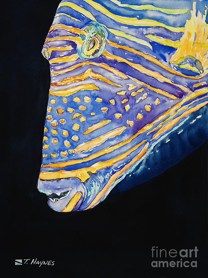 Aquatic Painting - Orange-lined Trigger by Tanya L Haynes - Printscapes