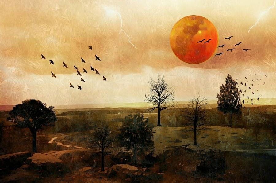 Fantasy Digital Art - Orange Moon by Shelley Smith