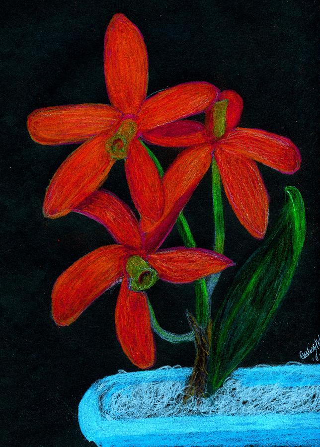 Orange Orchid In Bright Blue Pot Digital Art by Carliss Mora