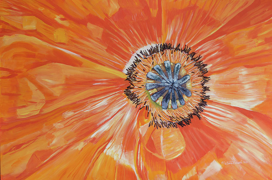 Orange Poppy by MKD Lincoln