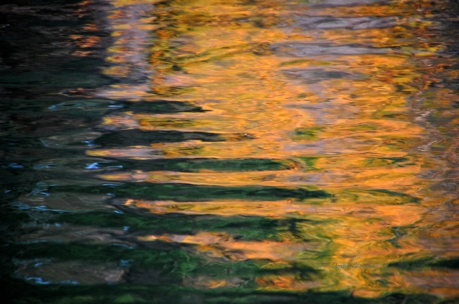 Water Photograph - Orange Sherbert by Donna Blackhall