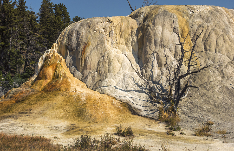 Yellowstone National Park Photograph - Orange Spring Mound by Loree Johnson