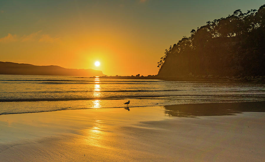 Umina Beach Photograph - Orange Sunrise Seascape And Beach by Merrillie Redden