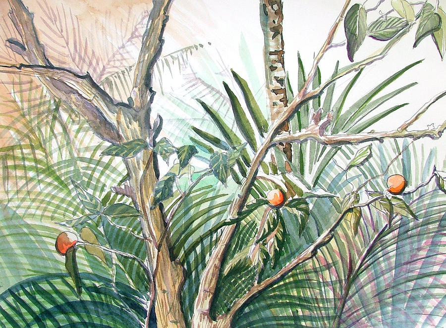 Fruit Painting - Orange Tree by Mindy Newman