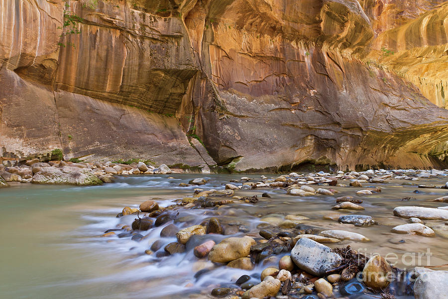 Orange Wall In Zion, Utah Photograph