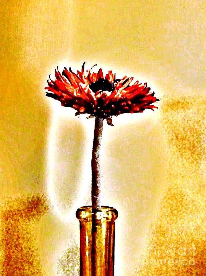 Histogram Photograph - Orange Wooden Flower by Marsha Heiken