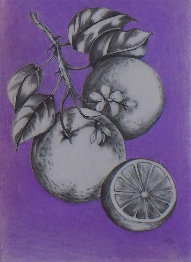 oranges by Chuck Caputo