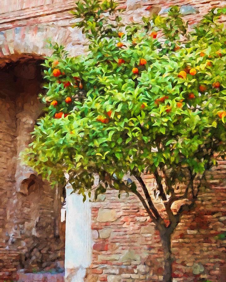 Orangetree Painting - Orangetree by Lutz Baar