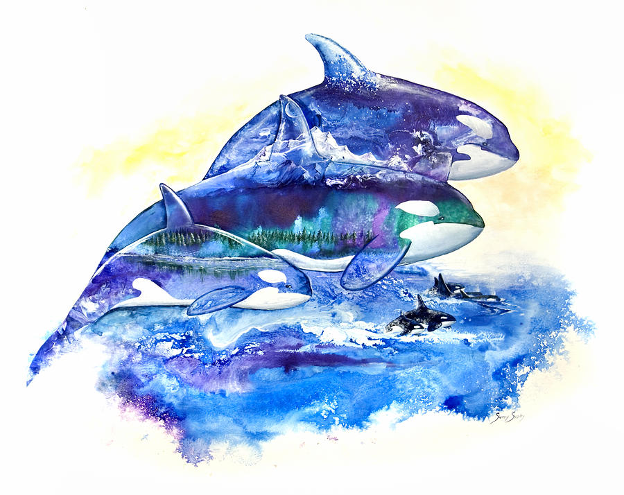 Orca Painting - Orca Fantasy by Sherry Shipley