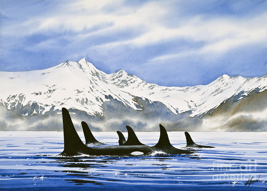 Orca Painting - Orca by James Williamson
