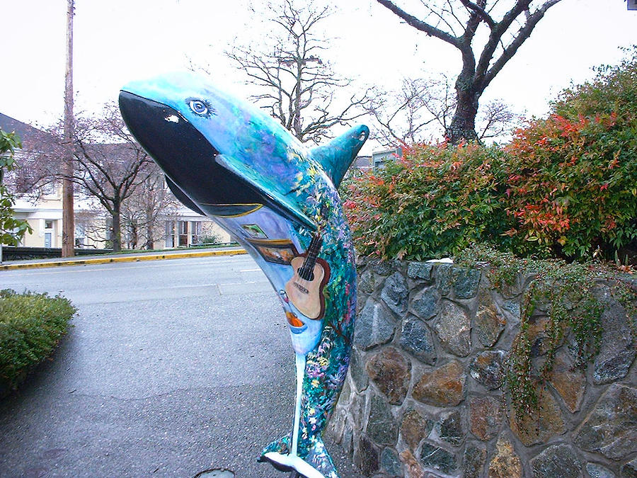 Orca On Parade 2 Photograph by Kevin Mcenerney
