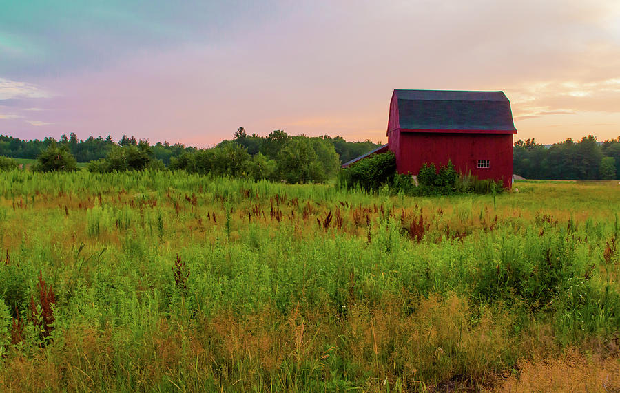 Farm Photograph - Orchard Evening by Debbie Gracy