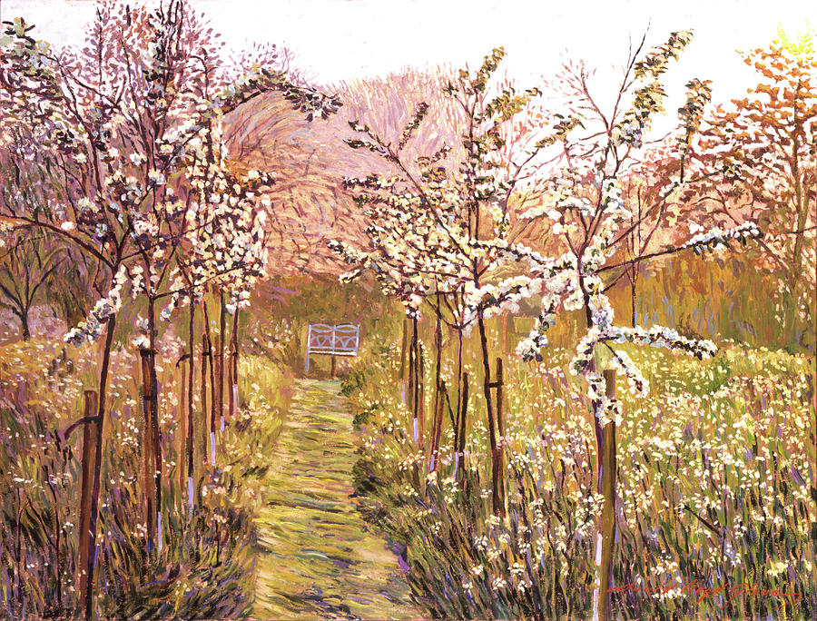 Orchards Painting - Orchard Morning by David Lloyd Glover