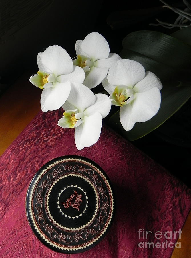 Orchid Photograph - Orchid and Burmese Bowl by Steve Rudolph