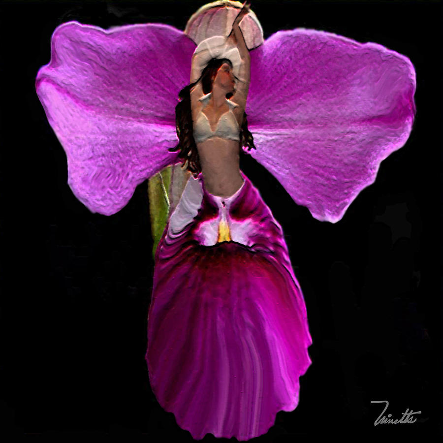 Orchid Digital Art by Andrea N Hernandez