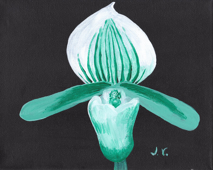 Orchid Painting - Orchid-paphiopedilum Bob Nagel by M Valeriano