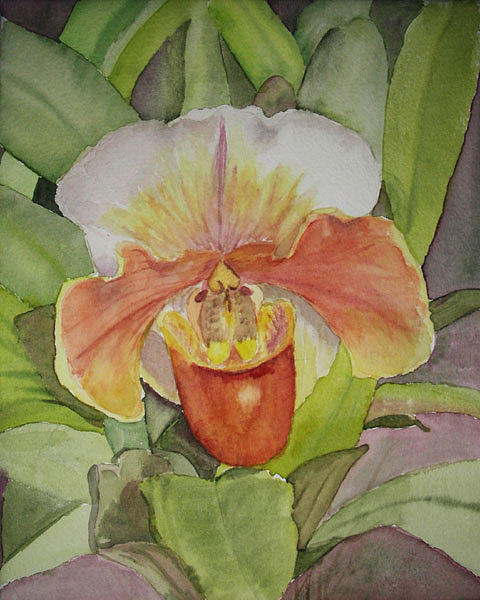 Orchid Painting - Orchid by Peggy Bergey