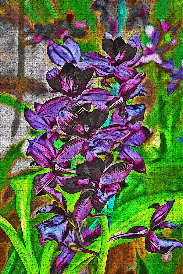 Orchids Photograph - Orchids 1714 by William David Thomas