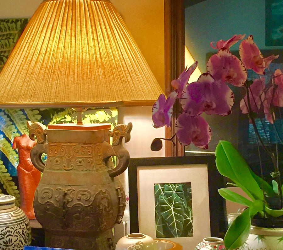 Orchids for the house by Lehua Pekelo-Stearns