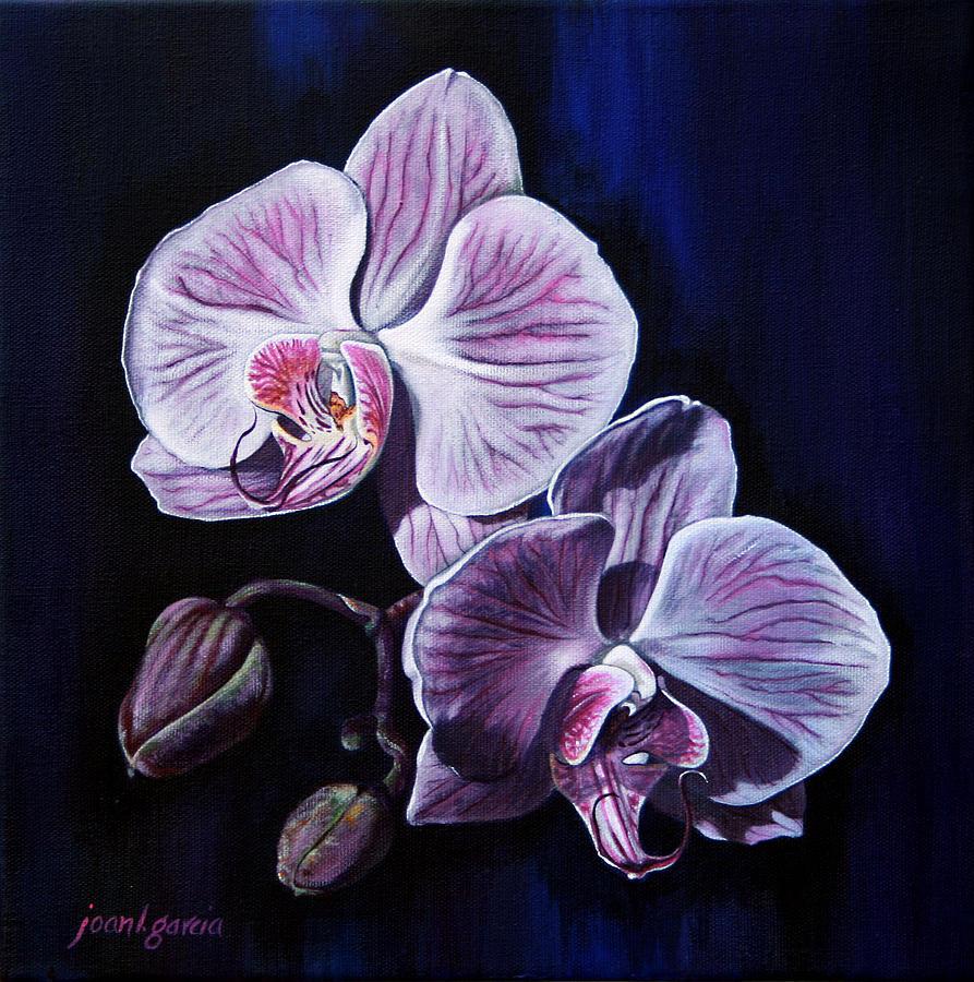 сей орхидеи картинки на бумаге никакие обзоры