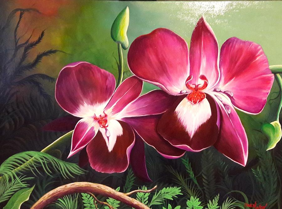 Orchids in the night by Owen Lafon